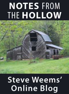 Notes from the Hollow